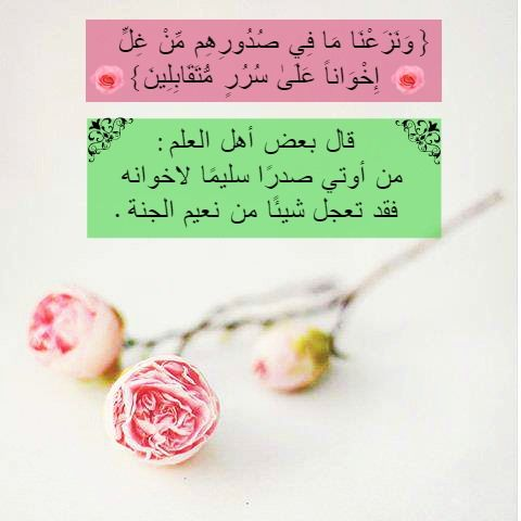 Pin By Shabeer On اسلاميات Place Card Holders Hadeeth Quotes