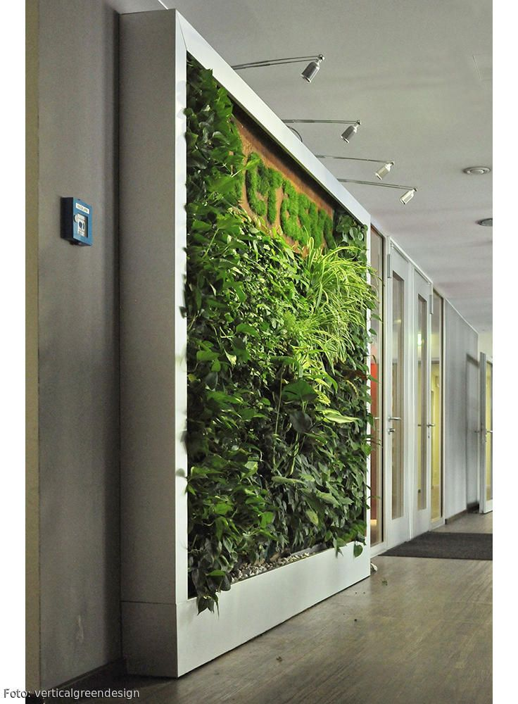 Hochwertig Grüne Wandgestaltung Für Das Büro Oder Die Empfangshalle Gesucht? Wir  Zeigen Viele Ideen Auf   U003e Roomido.com #vertikalbegruenung