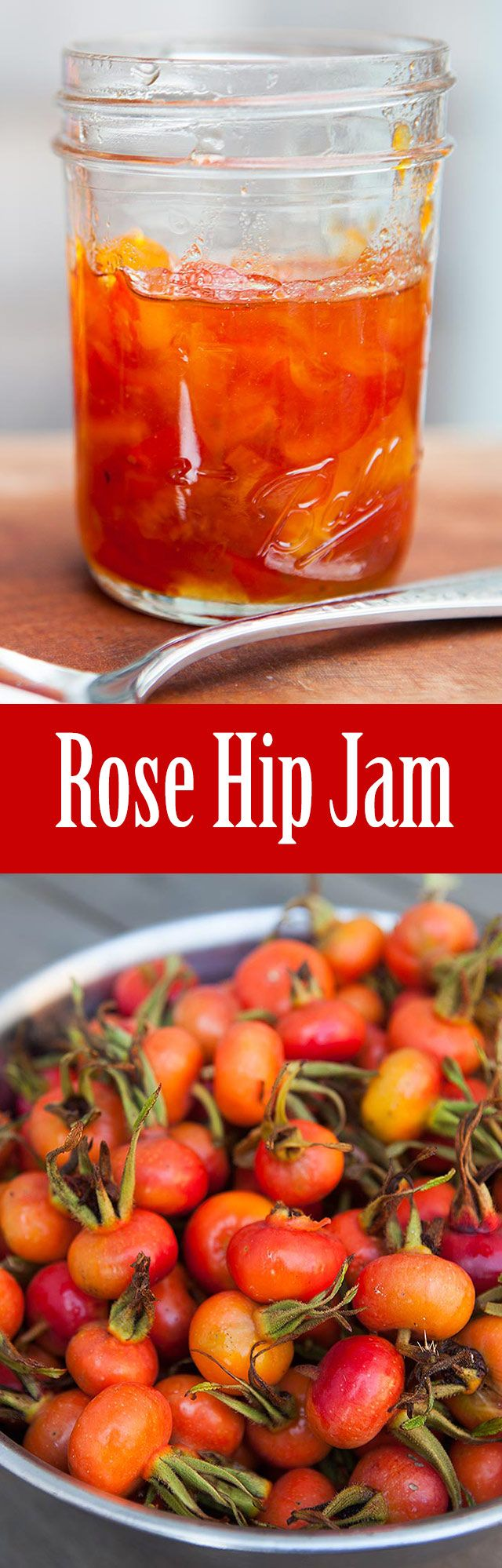 Rose Hip Jam ~ Marmalade-style rose hip jam with rose hips, orange, apple, lemon, and sugar. ~ SimplyRecipes.com