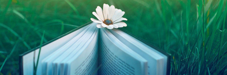 Elegant aesthetic | Book flowers, Book wallpaper, Iphone ...