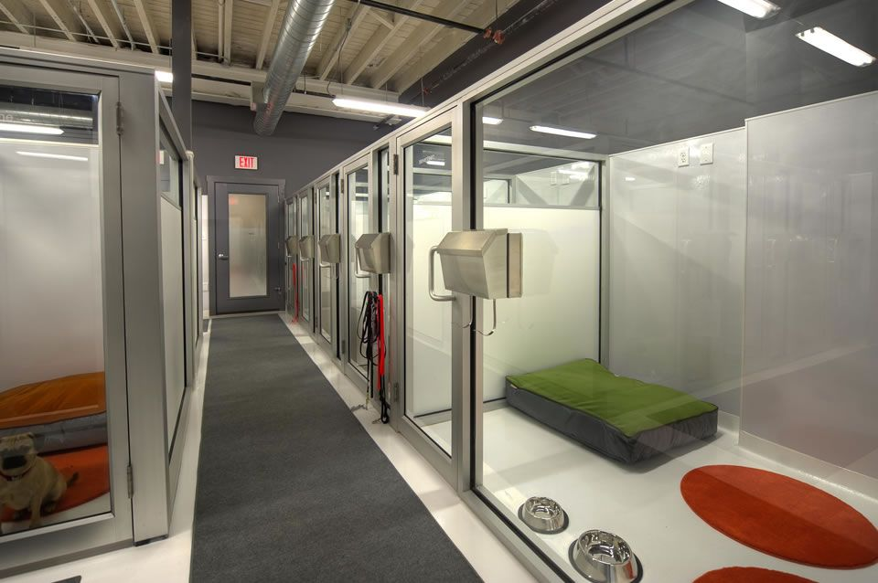 Love These Kennels, The Glass Fronts, Sealed/no-slip Floor