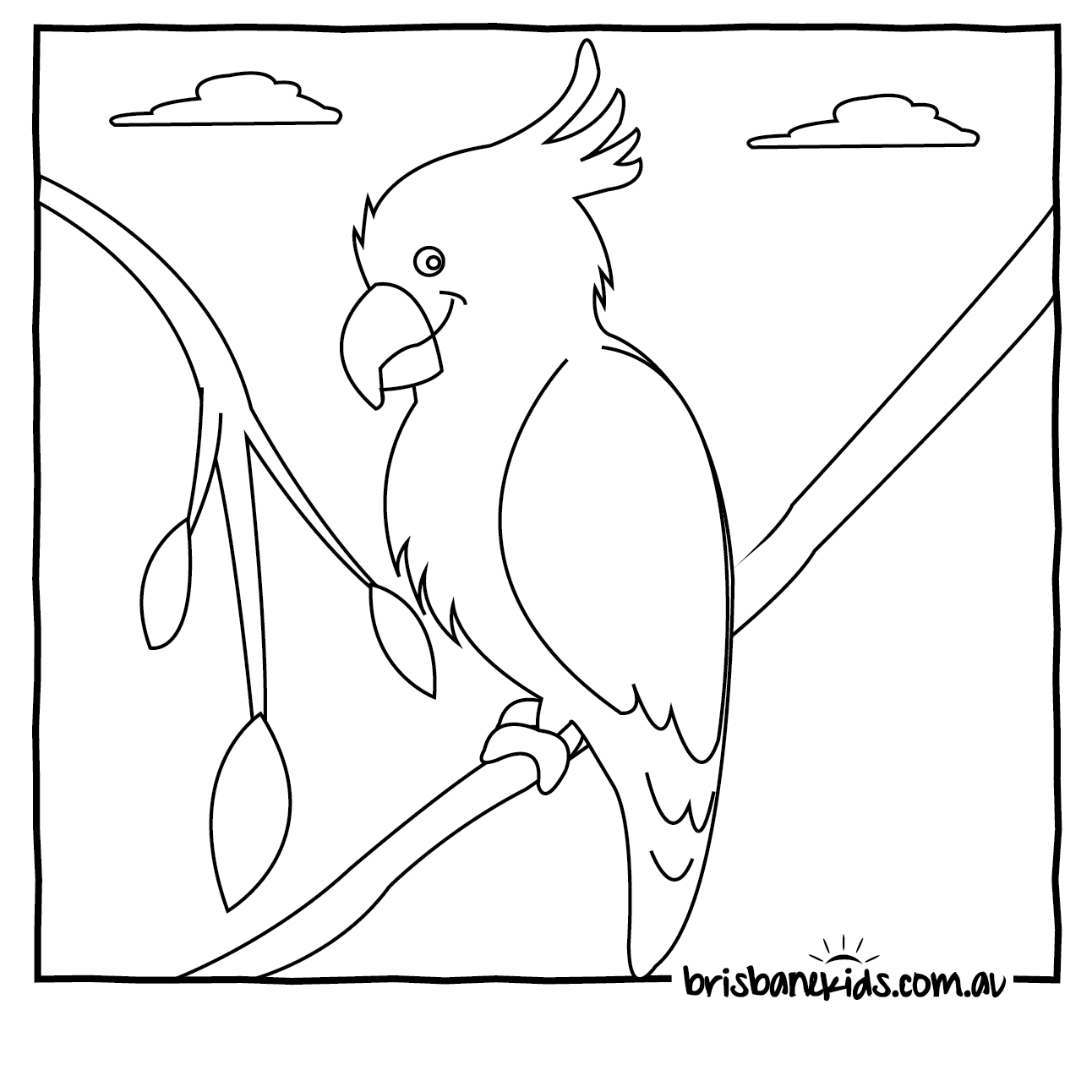Australian Animals Colouring Pages Cockatoo Bird