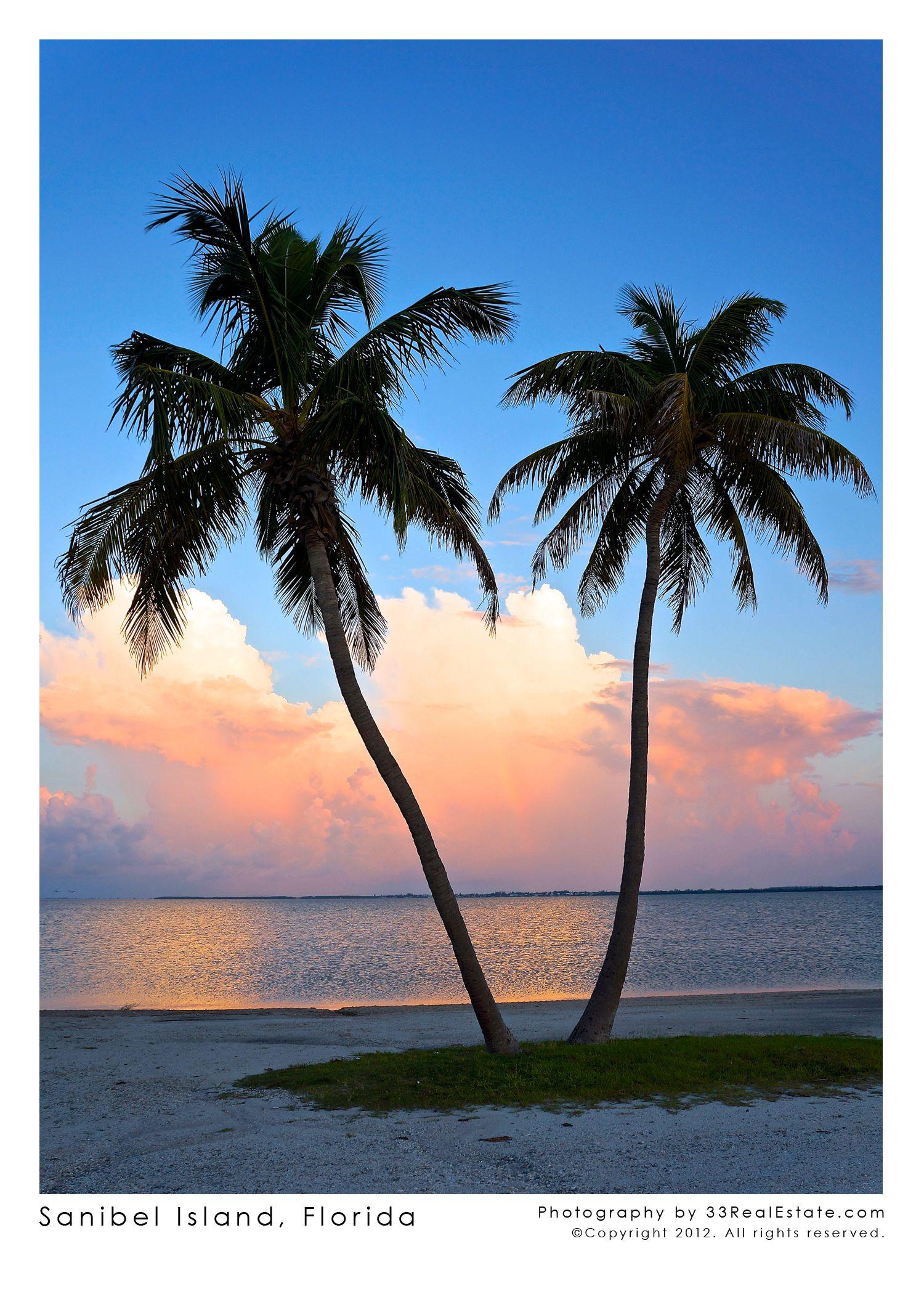 Sanibel Island, Florida #travel