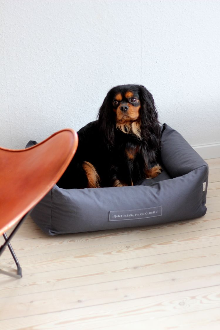 Bettwäsche Dog Side This Dog Bed By Cloud 7 Is The Ultimate In Pet Luxury Dogs At