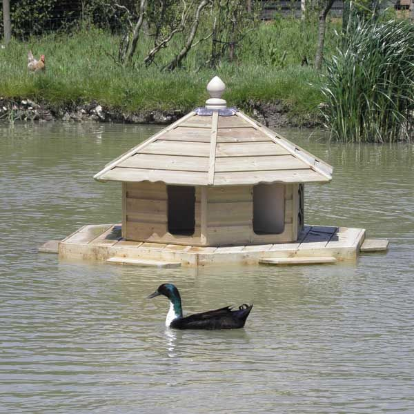 The Floating Duck Lodge - View 1