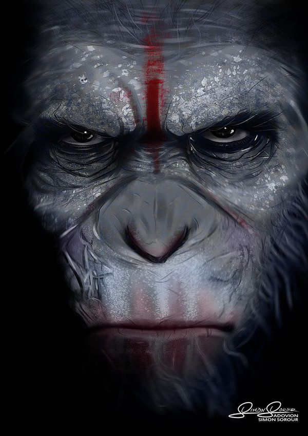 Caesar dawn of the planet of the apes by adovion - Caesar hd wallpaper ...