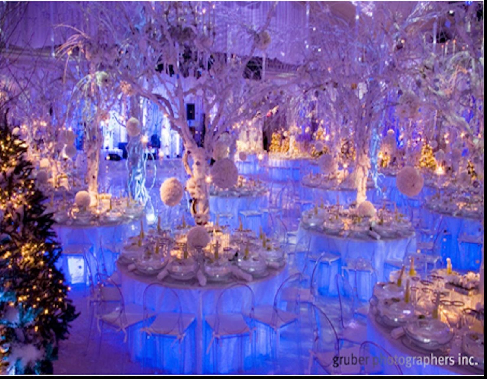 Pinterest Winter Wedding Centerpieces: Astounding Winter Wonderland Theme Wedding Reception With