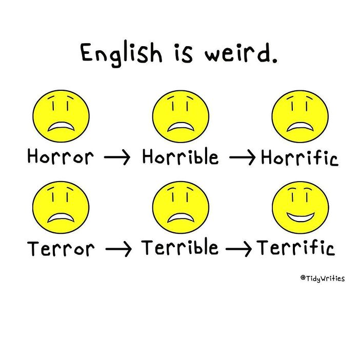 40 Times People Were Confused By The English Language