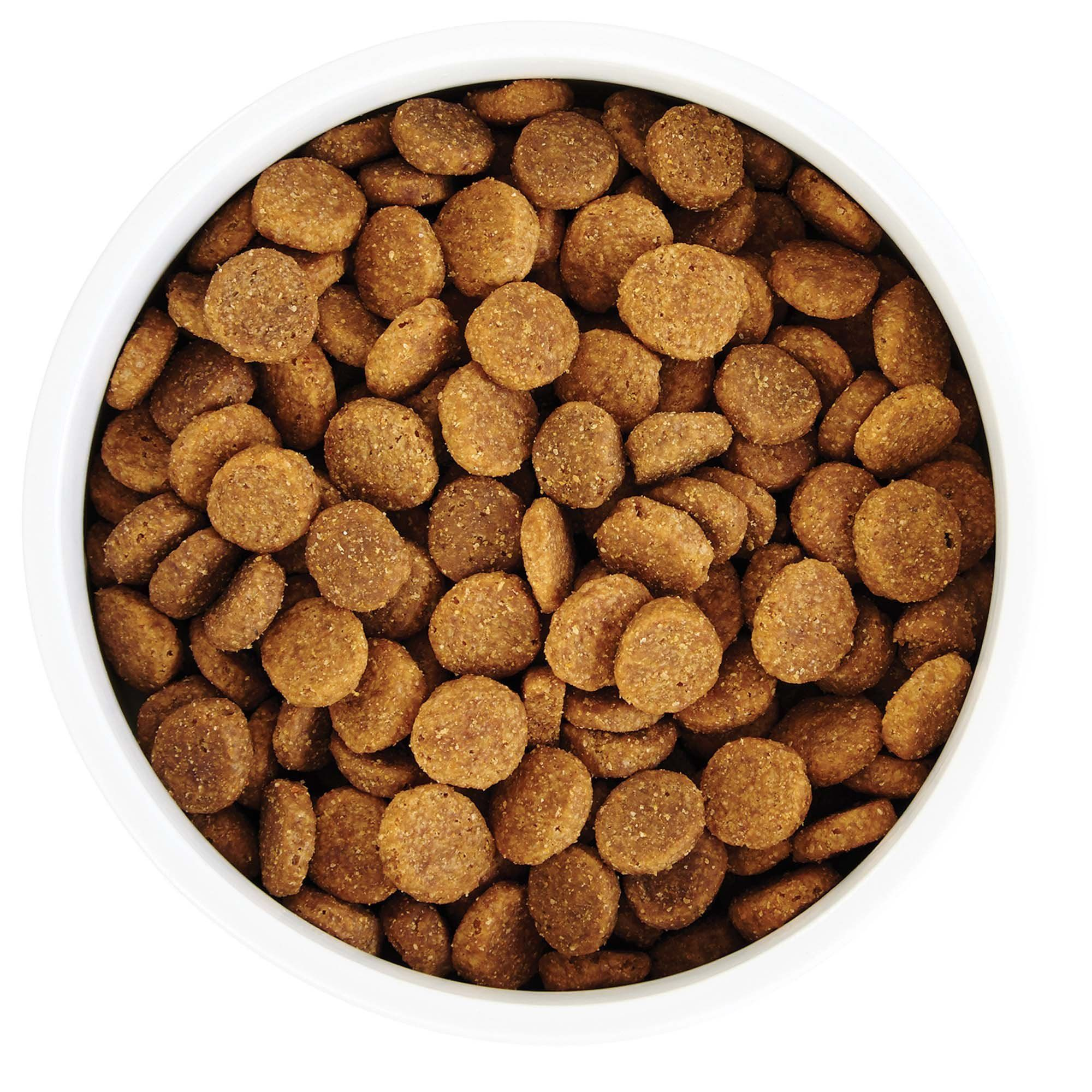 Wholehearted Grain Free Skin And Coat Care Pea And Salmon Recipe Dry Dog Food 25 Lbs Check Out The Image By Visiting Th Dog Food Recipes Dry Dog Food Food