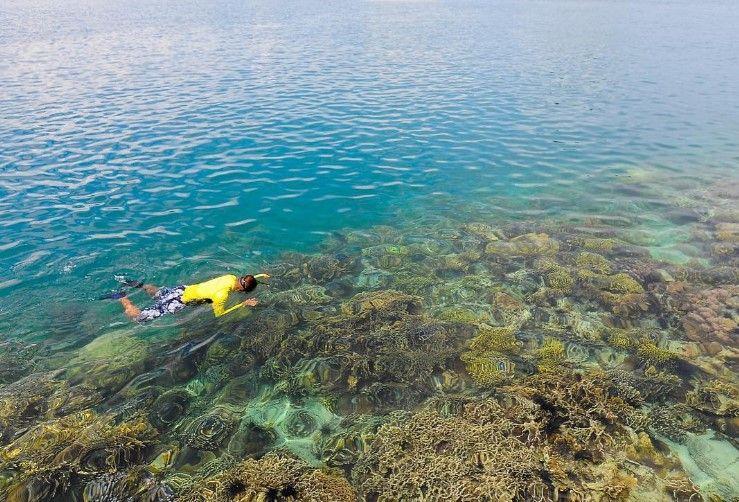 Pulau Petong Surga Snorkeling Tersembunyi Di Kepulauan Riau Kepulauan Riau Kepulauan Pulau Pemandangan