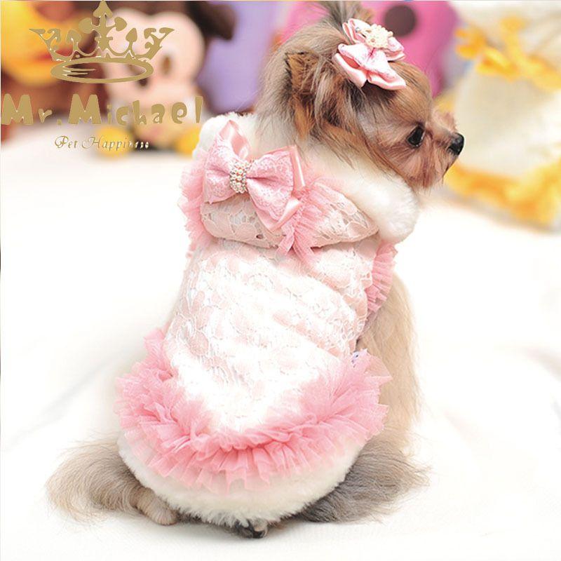 disfraz de angel para perro - Buscar con Google | Disfraces para ...