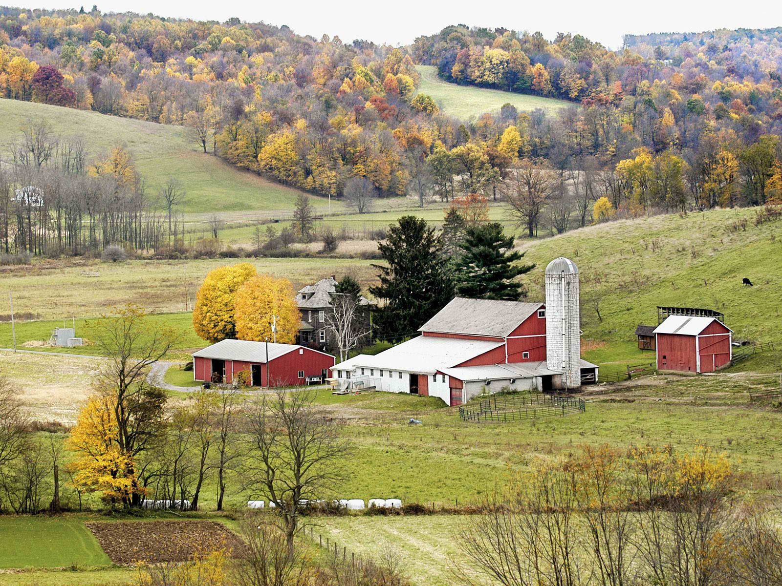 Amish country ohio amish pinterest for Amish country things to do