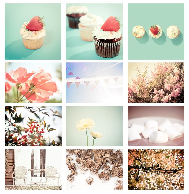 cupcakes and foliage.
