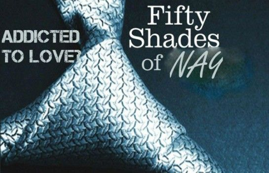 I've spent a lot of time the past few weeks ranting about the massive success and cult like following that the 50 Shades of Grey franchise has enjoyed (and yes I realize I may be a little late in the game here but shhh). The movie, which opened in theatres on Valentine's Day, grossed over $500 million and still holds the title of