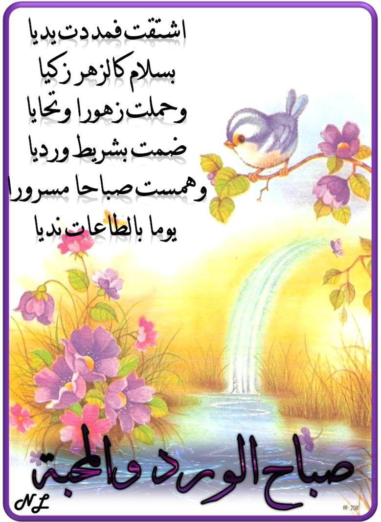 صباح الورد والمحبة Good Morning Gif Morning Images Beautiful Flowers