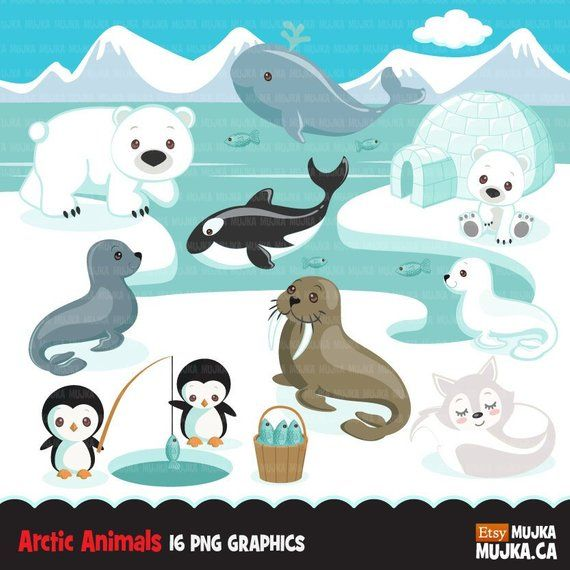 c3b61eae94 Cute winter animals, igloo, whale, walrus, penguin, polar bear, seal pup, or