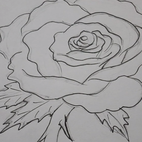 Verrassend Hoe teken je een Roos? | Roos tekeningen HO-08
