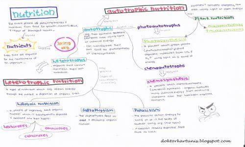 Nota Ringkas Biologi Tingkatan 4