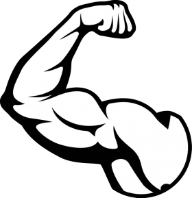 Muscle Bicep Muscle Bodybuilding Logo Gym Art