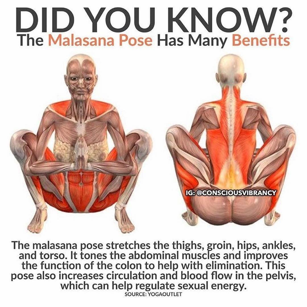 Malasana Yoga Pose Benefits yoga yoga pose  YOGA training