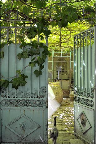 Chez Pascale Palun, Avignon, France- I'd like to use vintage wood screen doors and place a wood panel in it to make a door for my porch like this.