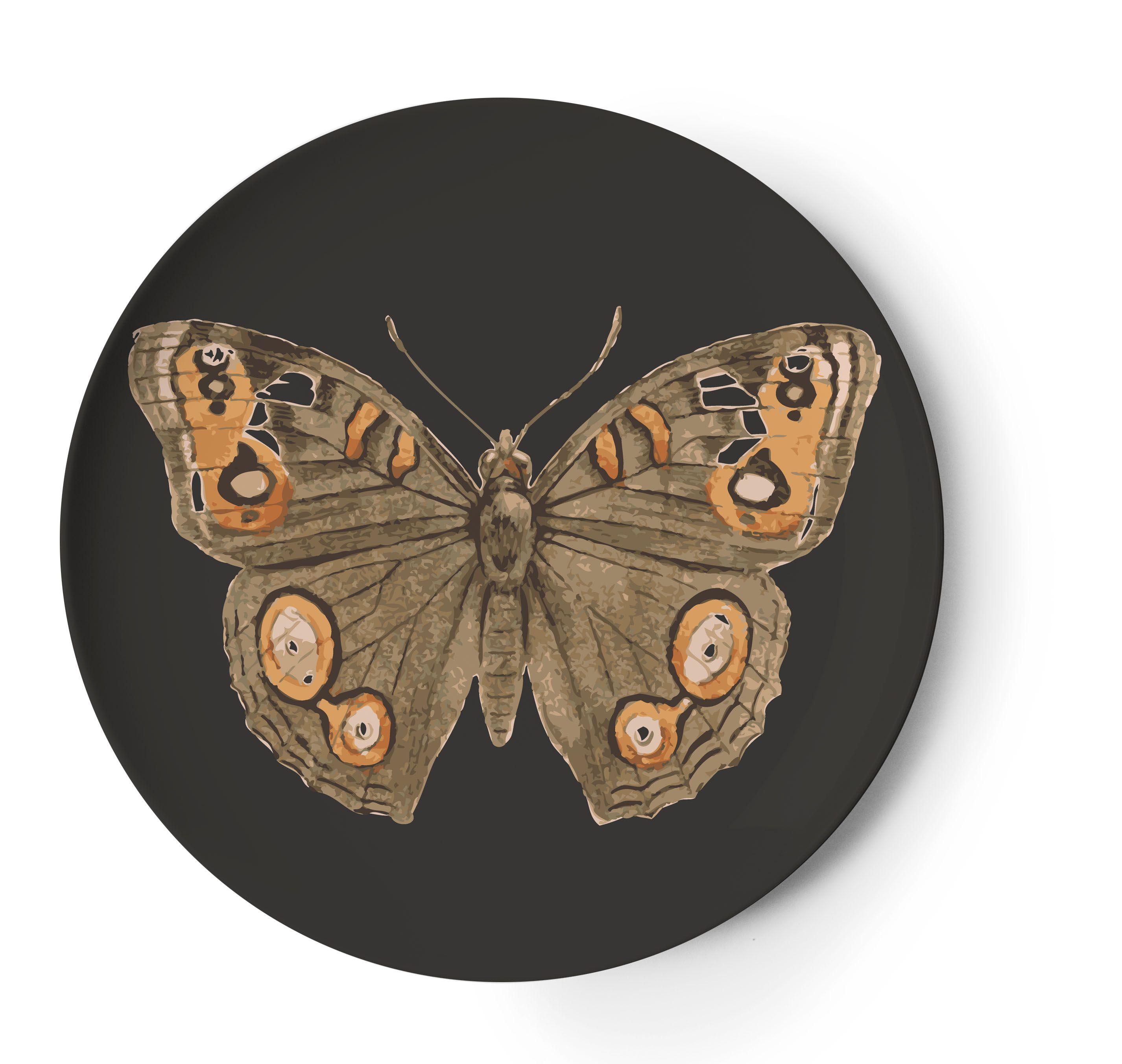 14 best thomaspaul melamine images on pinterest butterfly