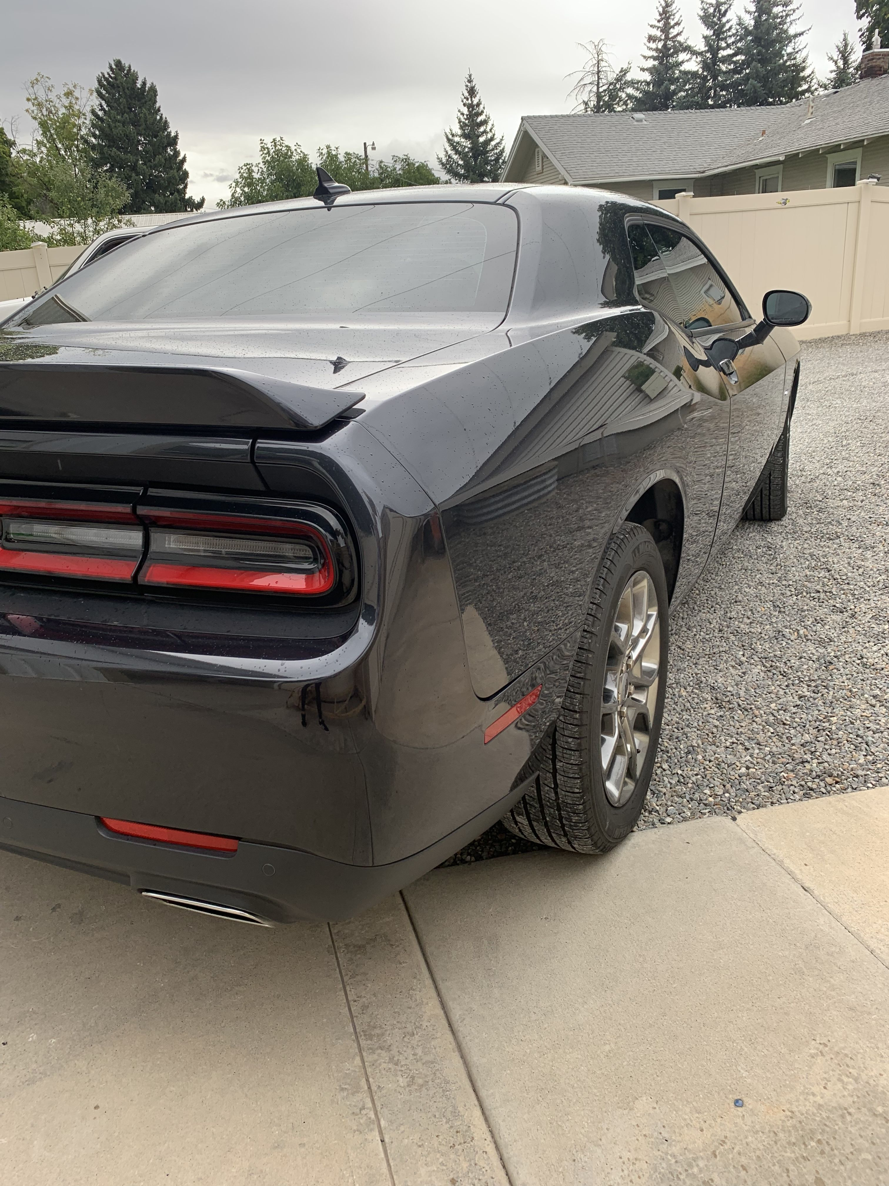 Challenger clear bra tinted windows tinted house windows