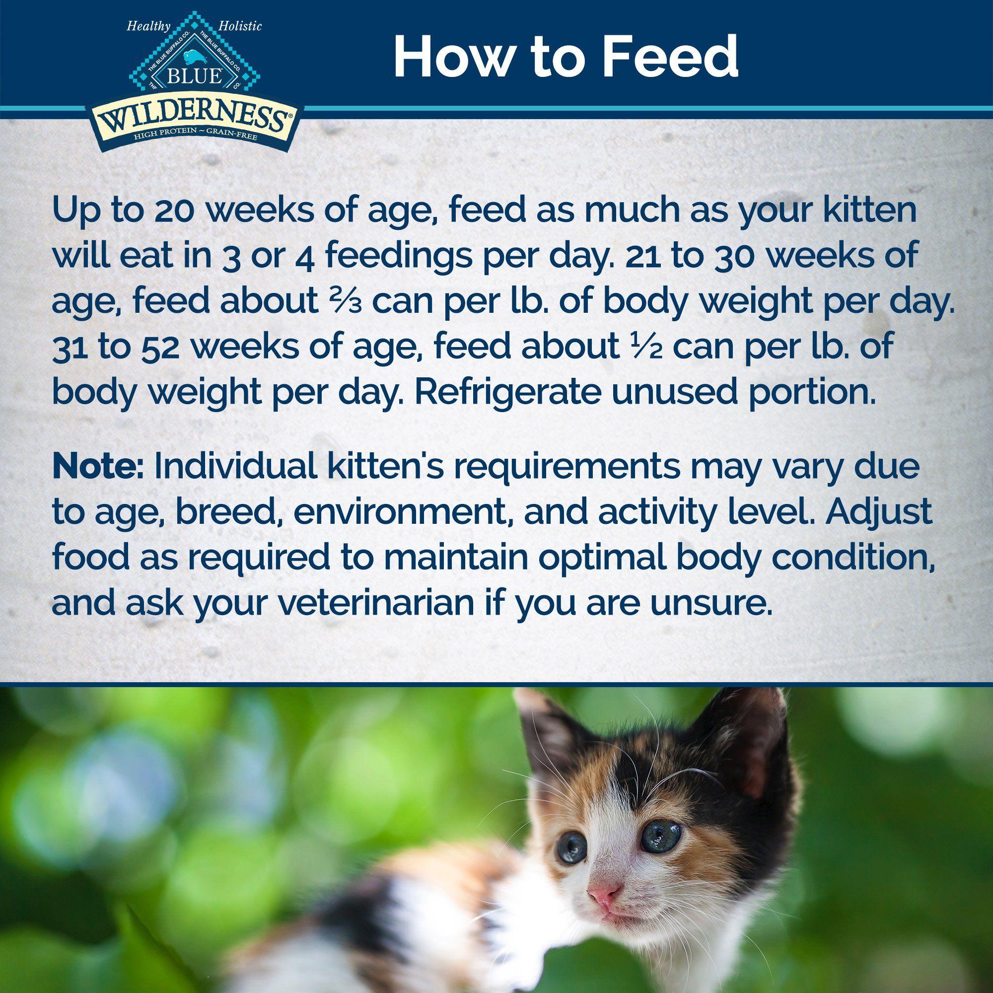 Blue Buffalo Blue Wilderness Kitten Salmon Recipe Wet Cat Food 3