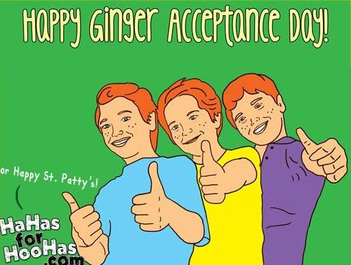 549cd839270470ecea17f283858d0ade funny st patrick's day meme ginger acceptance st patrick's day