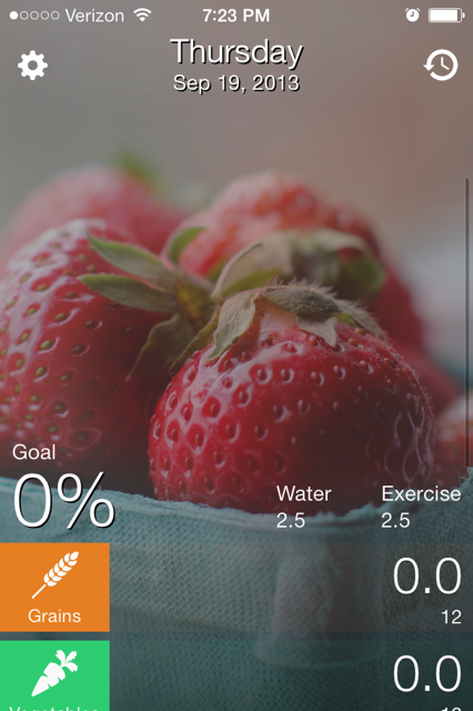 Early Shot Of Daily Food Diary App