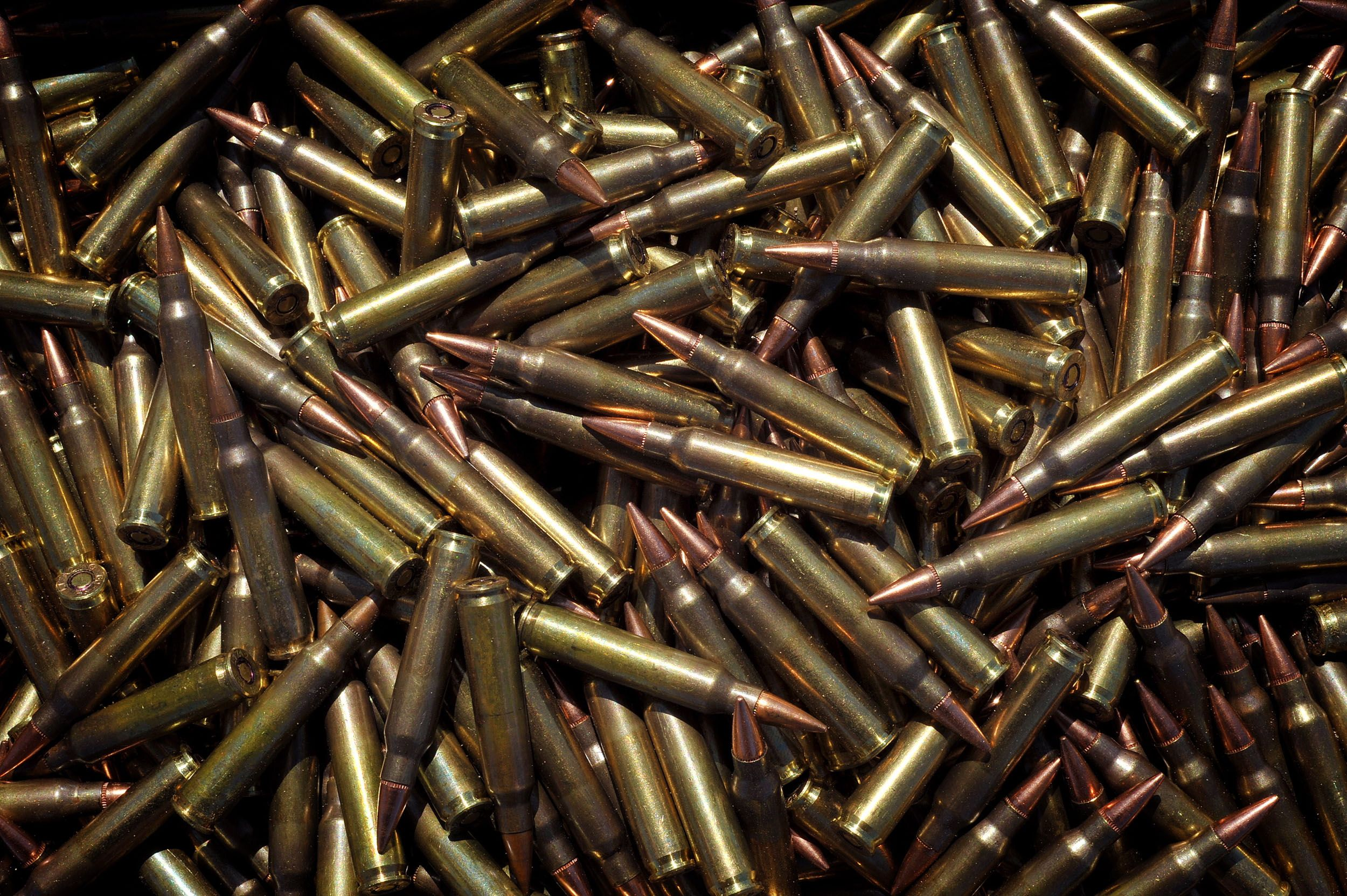 hight resolution of find your 5 56 bulk ammo los angeles supplies