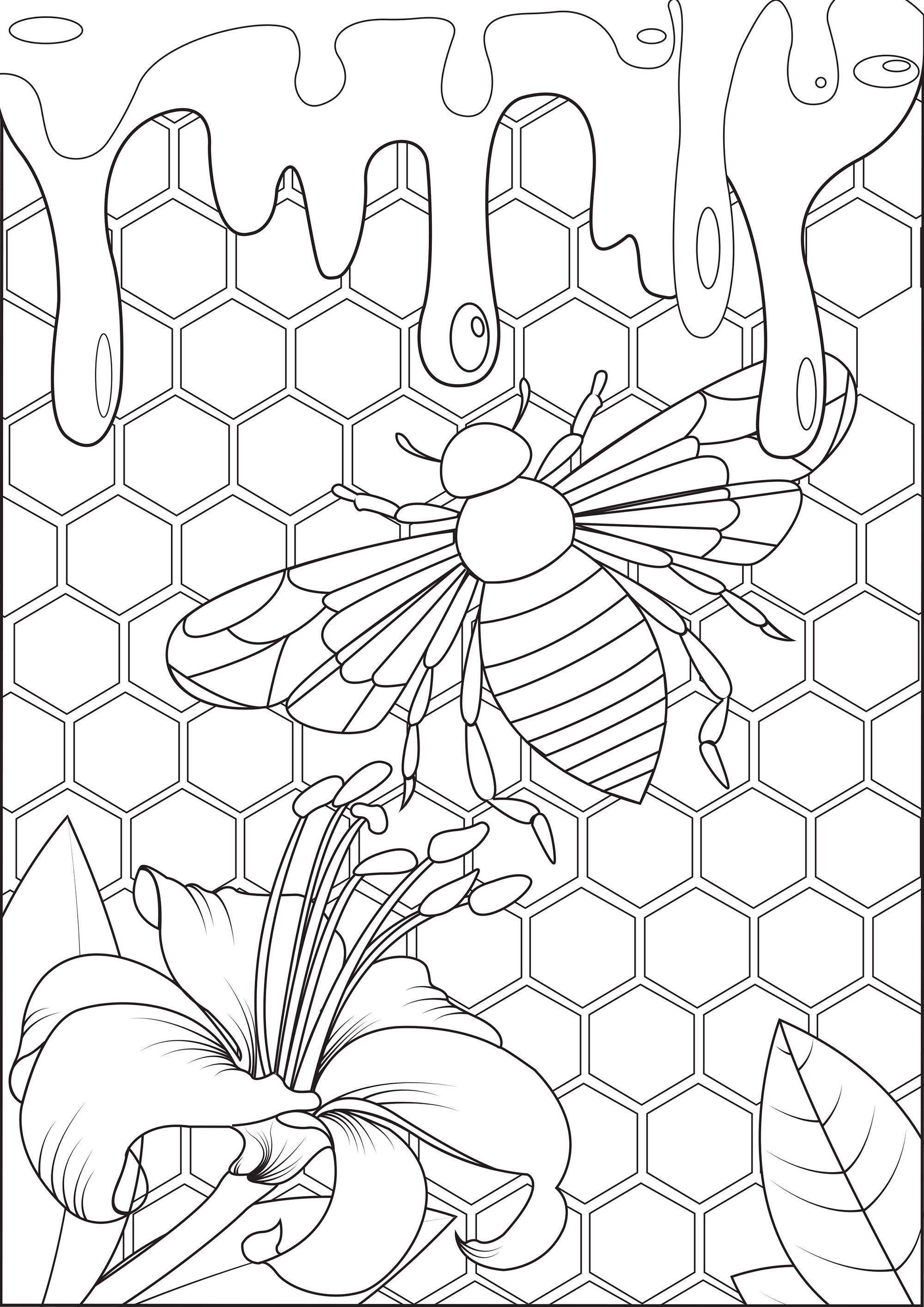 Bee And Honey Get Into The Hive And Taste The Honey From The Gallery Insects Artist A Bee Coloring Pages Insect Coloring Pages Mandala Coloring Pages