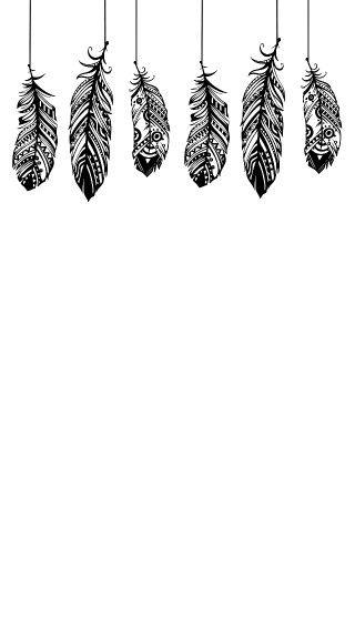 Piume Con Fantasie Su Sfondo Bianco Sfondi Sfondi Disegni Di
