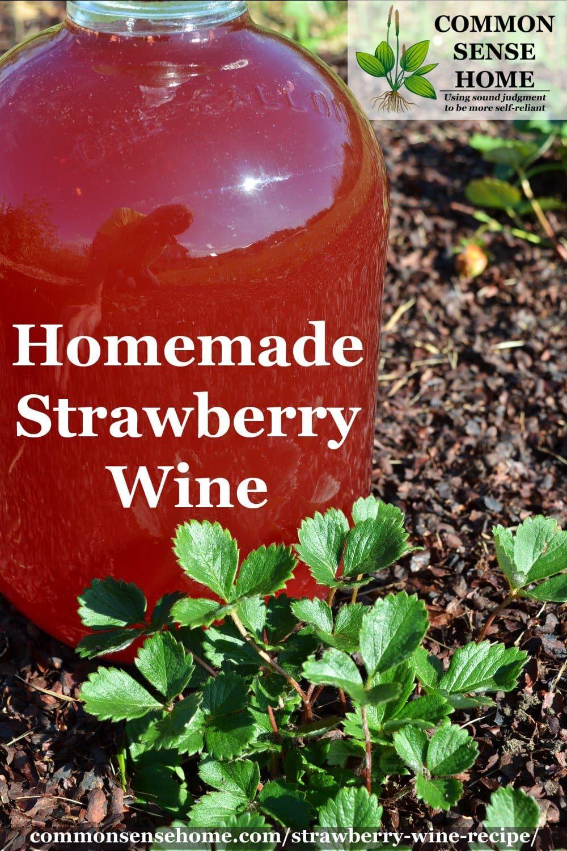 Easy Strawberry Wine Recipe Perfect For Beginners Recipe Easy Strawberry Wine Recipe Homemade Wine Wine Recipes