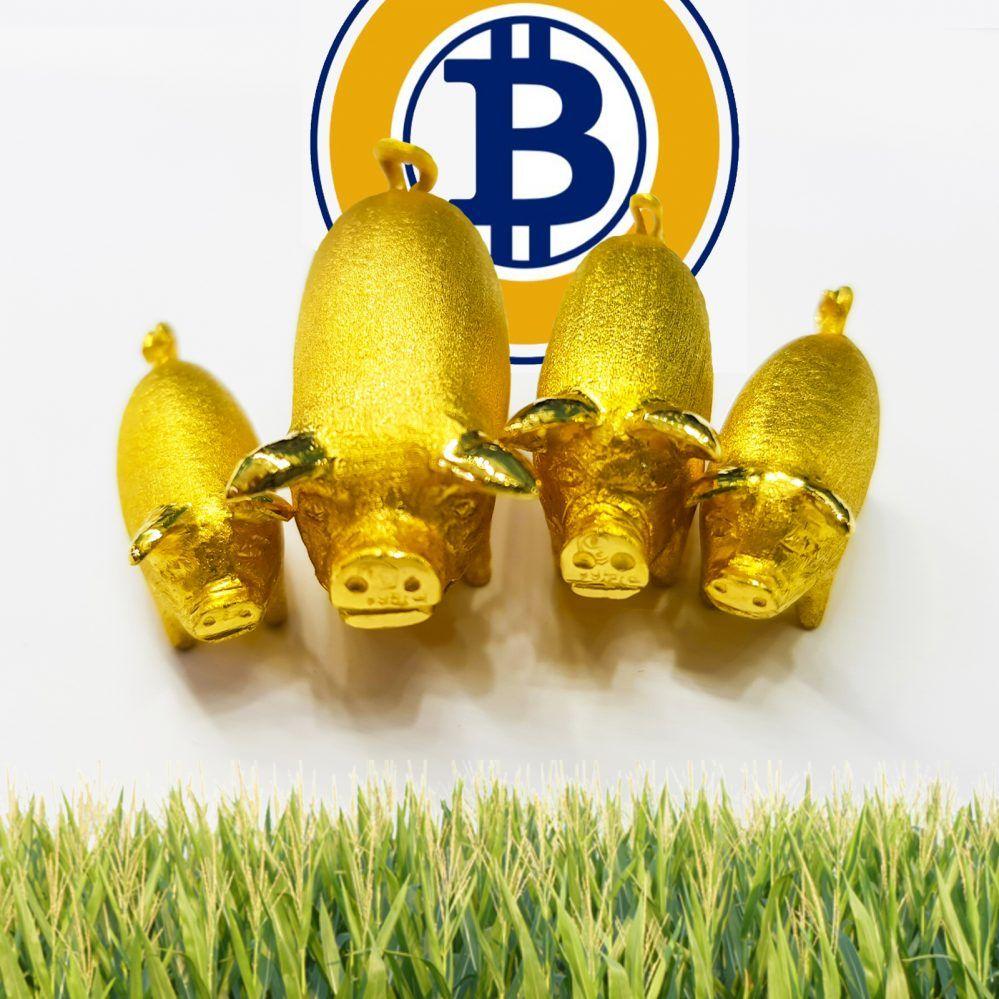 Bitcoin Gold Developer Under Scrutiny For Allegedly Hiding Mining ...