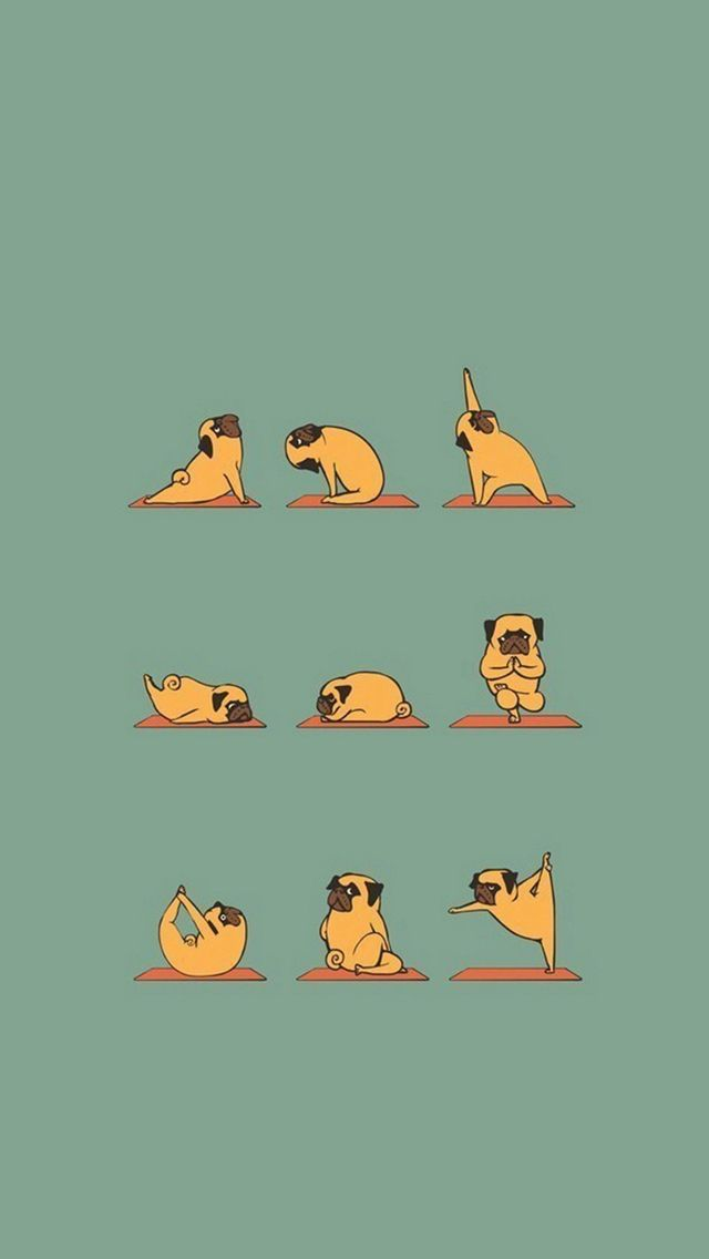 Funny Pug Doing Yoga #iPhone #5s #wallpaper | iPhone 5~SE Wallpapers | How to do yoga, Yoga art ...