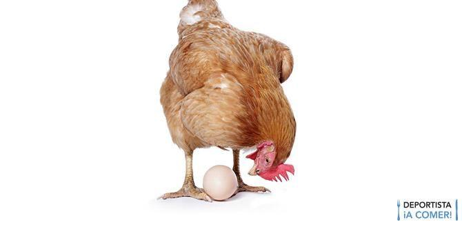 ¿Quién fue antes, el huevo o la gallina? - #nutrición #dieta #consejos #Aptonia # Decathlon
