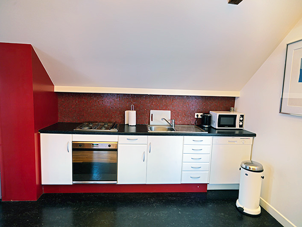Cook your own meals in your apartment in Reykjavik.   #reykjavikapartments #accommodationreykjavik #apartmentsreykjavik #icelandapartments #oneroomapartmentreykjavik #rentinreykjavik