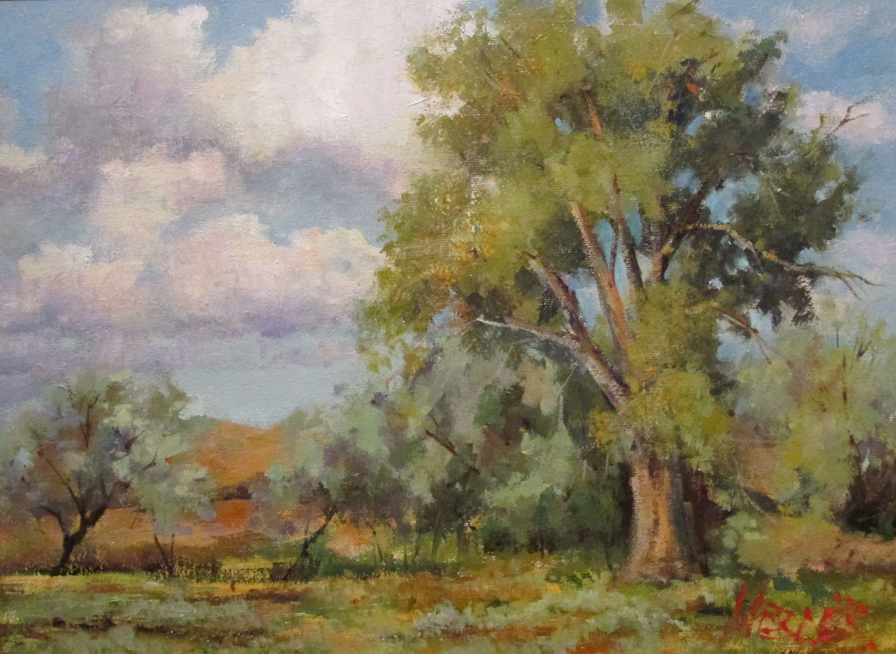 """Cottonwoods in Cody"" Oil on Canvas"