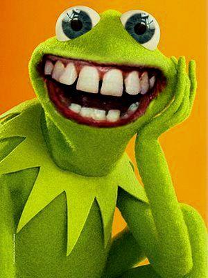 Weird Kermit Photos 1