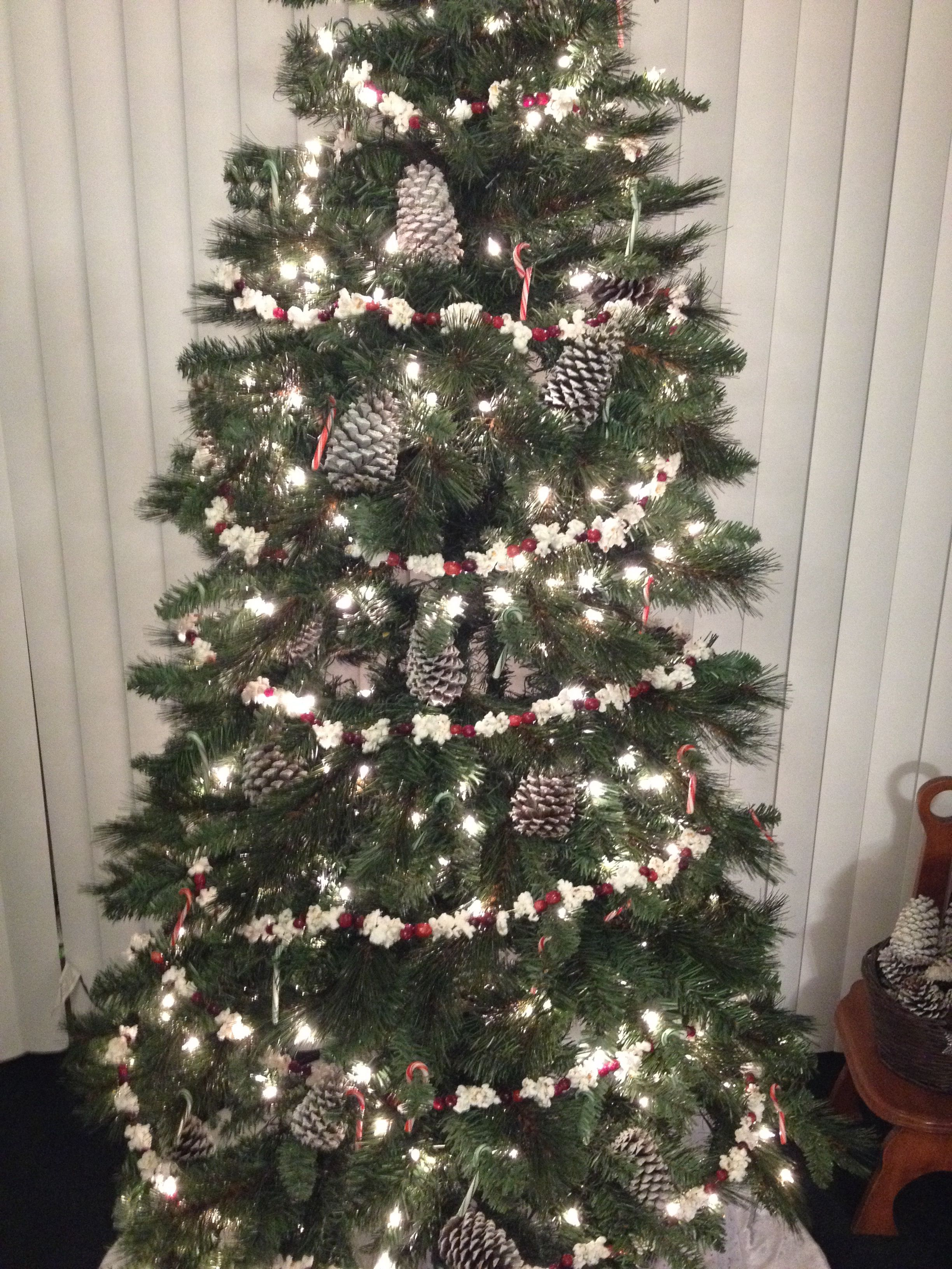 Our Tree All It Has On It Is Snow Covered Pinecones Popcorn And Cranberry Garland And Small Candy Ca Christmas Decor Diy Christmas Tree Garland Christmas Diy