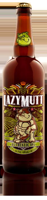 27+ Types of craft beer ipa info