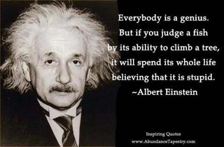 Albert Einstein Quote Everybody Is A Genius Einstein Quotes Albert Einstein Quotes Einstein Fish Quote