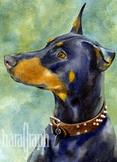 Original Watercolor My Nephews Dog Jersey Photos Background