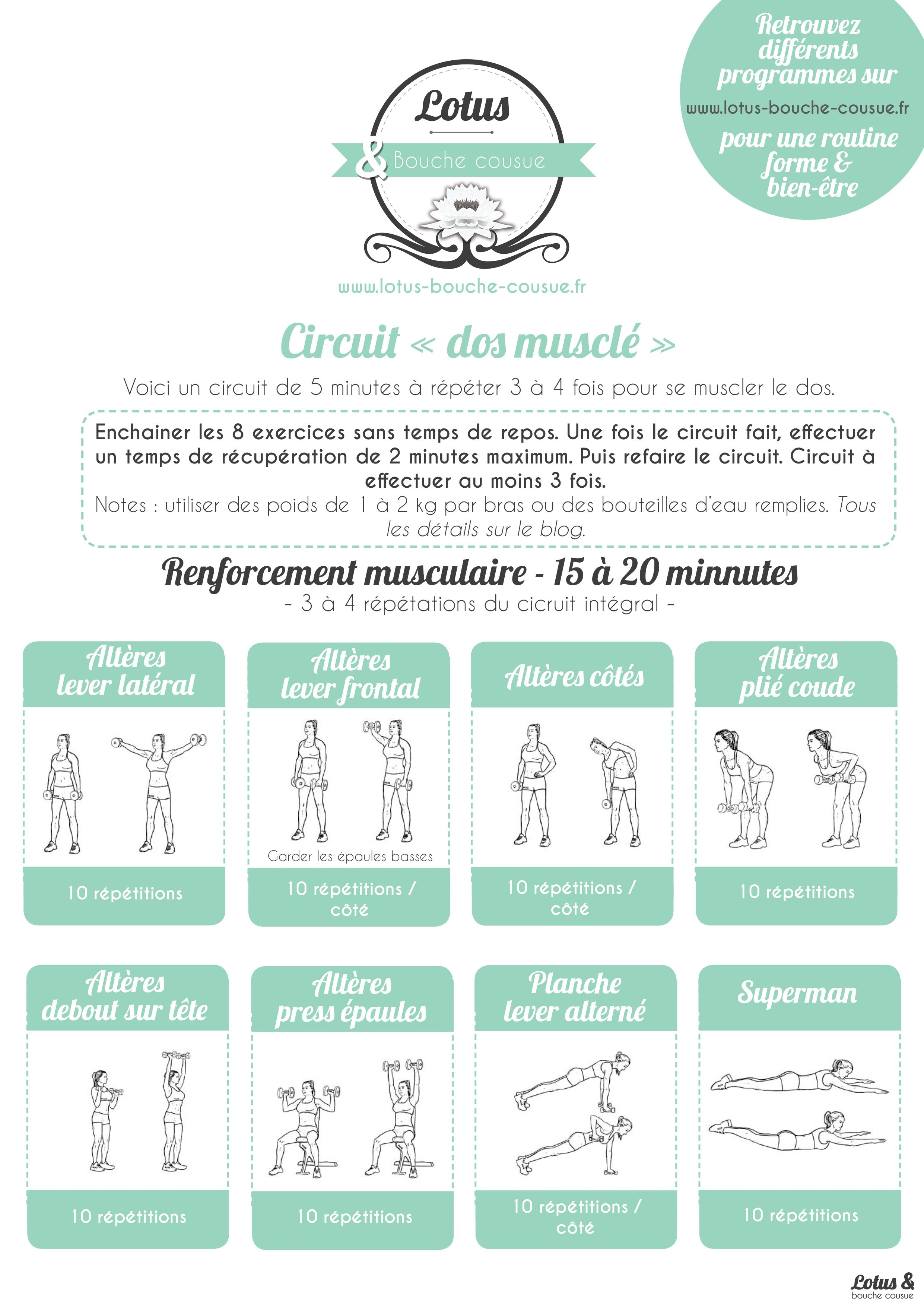 Circuit Cibl Pour Un Dos Muscl Mise En Forme Pinterest Full Body Workout With Weights Workouts Part I Back Sport Entrainement Programme Mincir Muscler Fitfrenchies Fitness Musculation Femmes Motivation