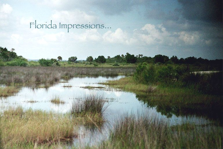 Florida Impressions Collection, Alamance CreekMusic, New Age and Romantic Original Piano Pieces and Free Piano Sheet Music