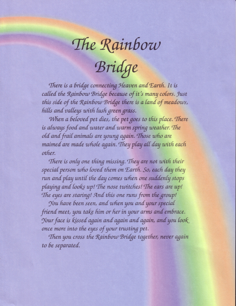 rainbow to heaven for pets Have you seen The Rainbow