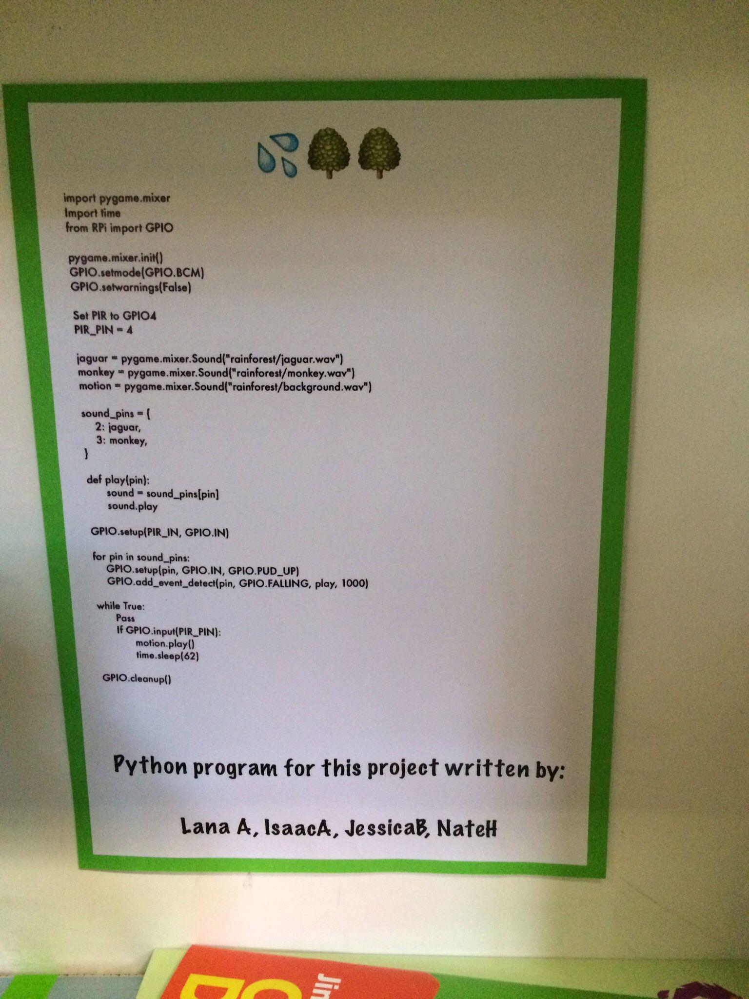 16 Best Rainforest area school images in 2015   Schools, School