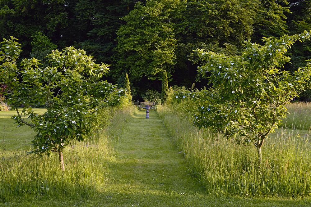 Photo of Garden – Peter Janke garden concepts