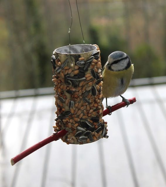Vogelfutterstation Grimmskram Bloglovin Vogel Bird Feeders